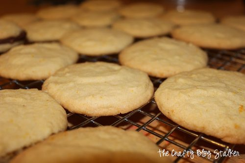 An easy DIY recipe tutorial idea for Fudge and Orange Cookies. A cookie recipe that is so good you'll want to share with everyone!