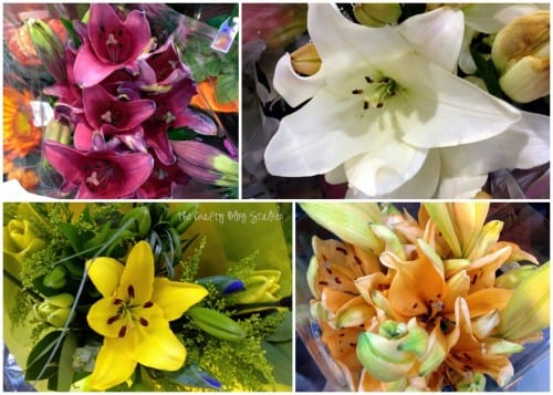 a collage of different colored lilies in pink, white, yellow and orange
