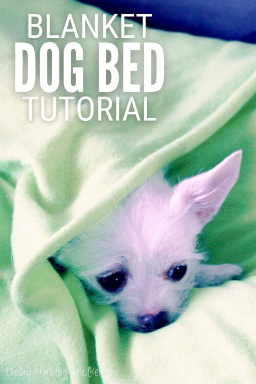 title image for How to Make a Blanket Dog Bed Tutorial