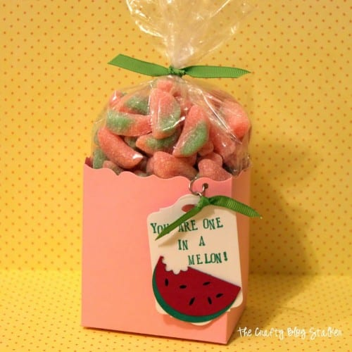 Give a gift of Watermelon Sour Patch candies in a paper treat bag. Easy to make and fun to give. Great for a kid's birthday party or a teacher gift.