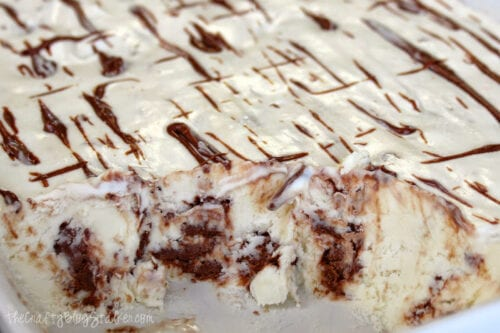 a dish of homemade fudge ripple ice cream