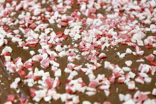 Peppermint-pieces