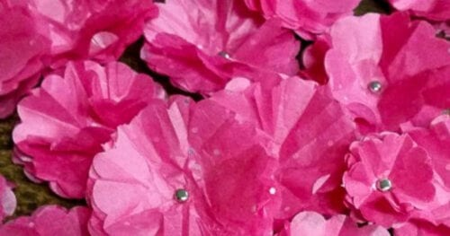 tissue paper flowers 9