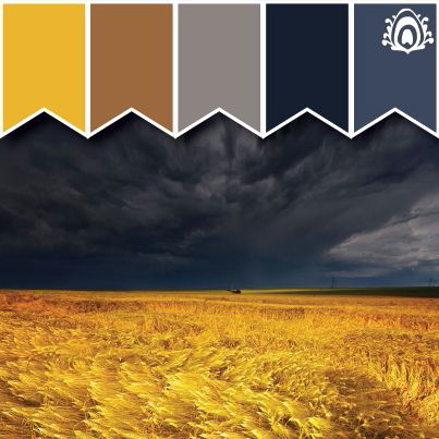 color scheme for main areas of the house with yellows, grays, and blues