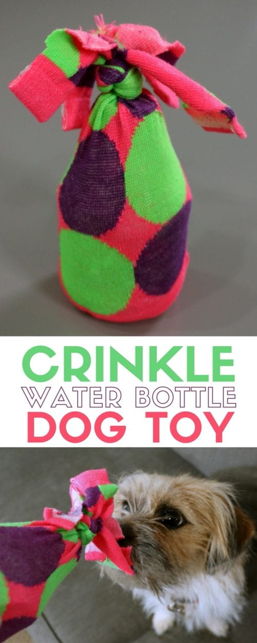 title image for How to Make an Empty Water Bottle Dog Toy Cruncher with close up images of the toy and a dog playing with the toy