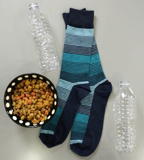 an empty water bottle, socks, and dog food; supplies needed to make an Empty Water Bottle Dog Toy Cruncher