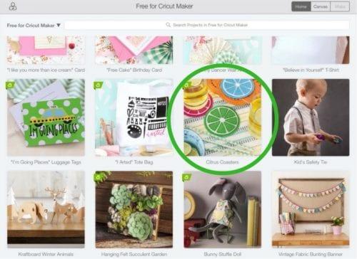 Felt Citrus Coasters | Cricut Maker | Make it Now Project | DIY Craft Idea | Tutorial | How to
