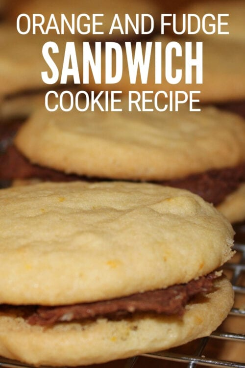 title image for orange cookies recipe