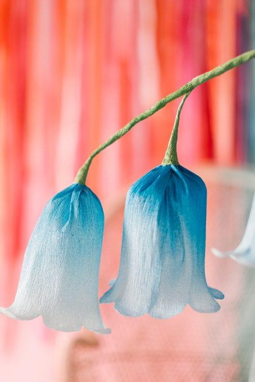 Nahaufnahme von blauen und weißen DIY Papierblumenglocken