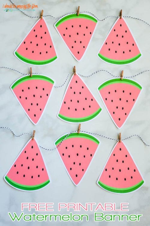Top 20 Fun Watermelon Craft Ideas Perfect for Summer featured by top US craft blog, The Crafty Blog Stalker: banner