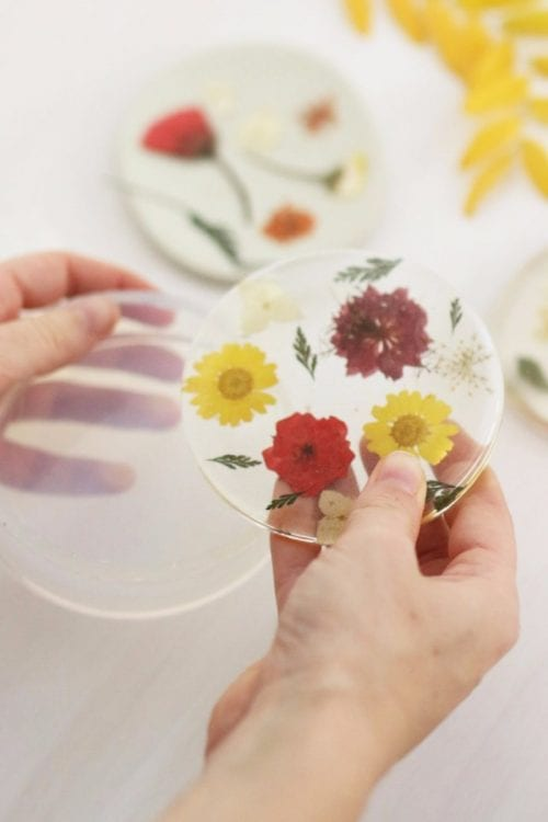 Easy-to-Make DIY Coasters featured by top US craft blog, The Crafty Blog Stalker: image of DIY pressed flowers coasters