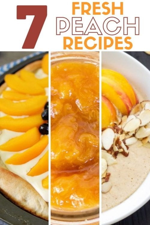 The Best 7 Fresh Peach Recipes, a tutorial featured by top US craft blog, The Crafty Blog Stalker