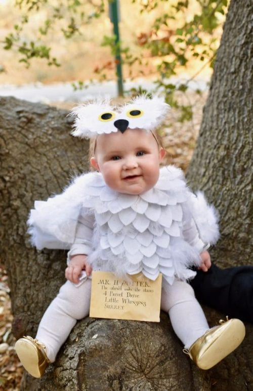 20 Amazing Cricut Halloween Costume Ideas featured by top US craft blog, The Crafty Blog Stalker: Hedwig baby owl