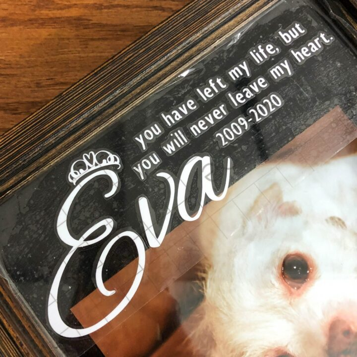 How to Create a Meaningful Pet Memorial Shadow Box