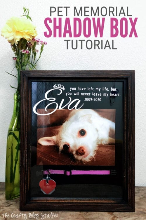 title image for Remembering Loved Ones: How to Create a Meaningful Pet Memorial Shadow Box