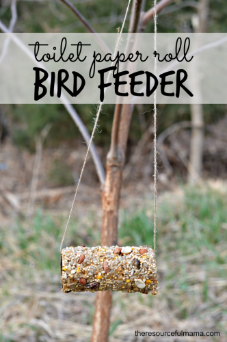 30 Fun Spring Break Crafts you can Make with Children featured by top US craft blog, The Crafty Blog Stalker: Toilet Paper Roll Bird Feeder