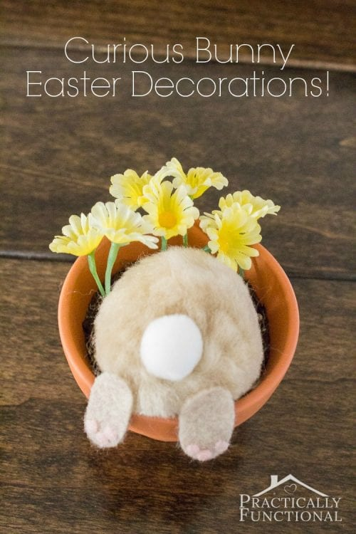 20 Fun DIY Easter Decor Ideas featured by top US craft blog, The Crafty Blog Stalker: Curious Bunny Pot