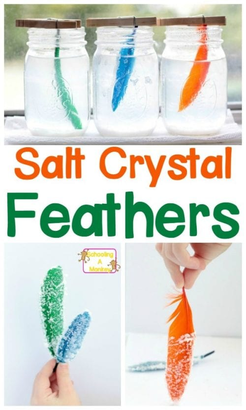 20 Fun Science Crafts for Kids you can Make at Home, featured by top US craft blog, The Crafty Blog Stalker: Salt Crystal Feathers