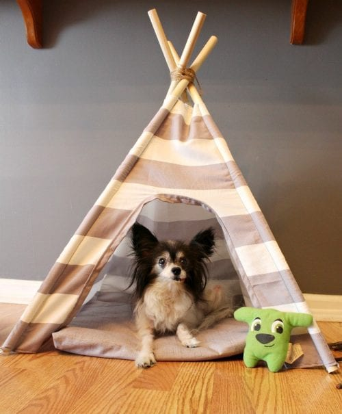 20 DIY Crafts for Dogs featured by top US craft blog, The Crafty Blog Stalker:  Diy Dog Tent