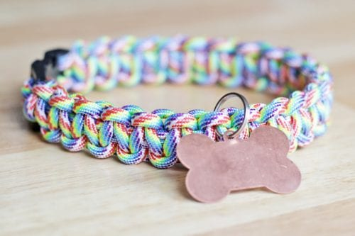 20 DIY Crafts for Dogs featured by top US craft blog, The Crafty Blog Stalker:  rainbow paracord dog collar
