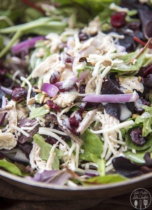 image of Chicken Cranberry Sunflower Salad