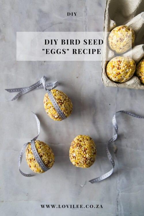Bird Seed Balls