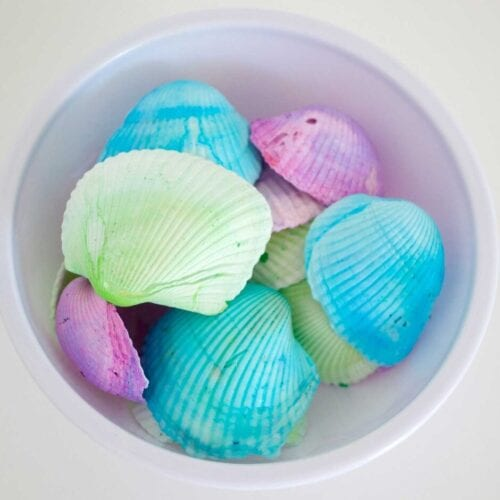 How to Dye Sea Shells