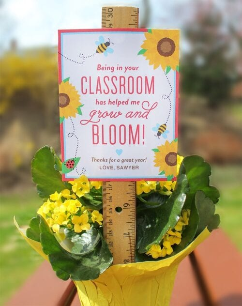 """Bloom in Your Classroom"" Flower Teacher Gift Idea"