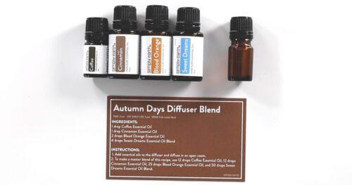 autumn days diffuser recipe 7